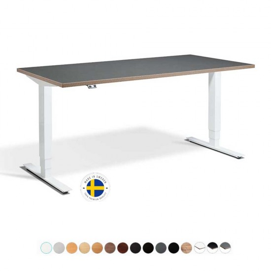 RISE 2 Dual Electric Motor Adjustable Height Standing Desk, 1600mm