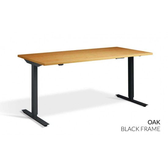 RISE 1 Electric Sit Stand Desk. Dual Motor Height Adjustable Desk, 1200mm