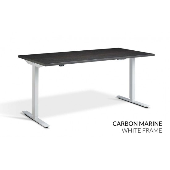 RISE 2 Dual Motor Height Adjustable Electric Stand Up Desk, 1400x800mm